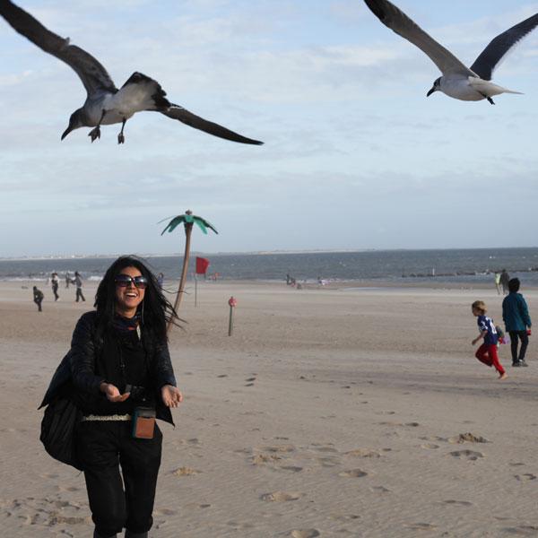 Saki, Seagulls